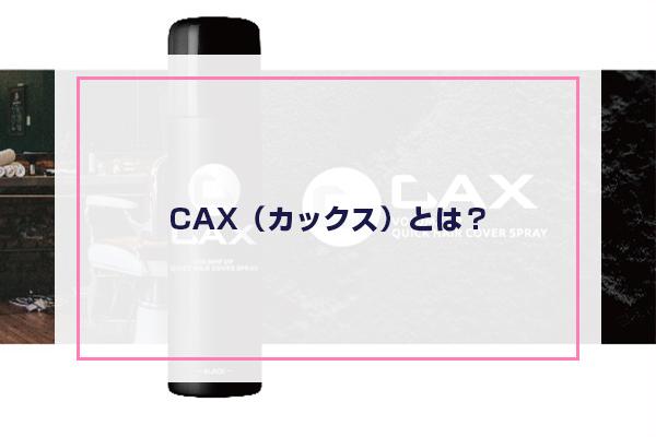 CAX(カックス)とは